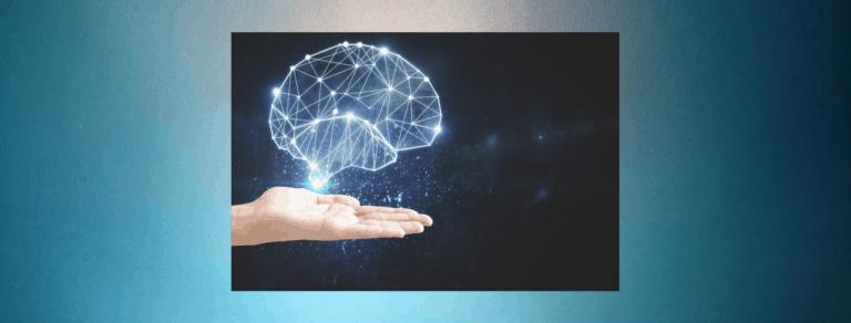 weetjes over het hoogbegaafde brein
